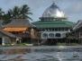 Borneo - Indonesie